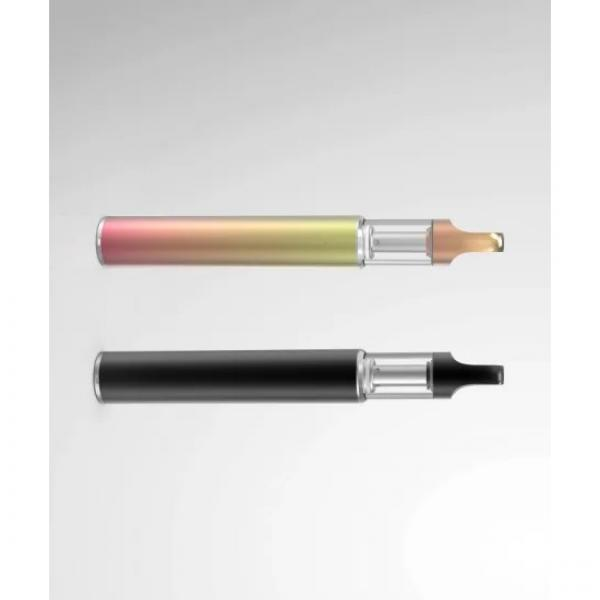 OEM Low Price Rechargeable Refillable and Cartridge Replaceable Disposable Vape Pen